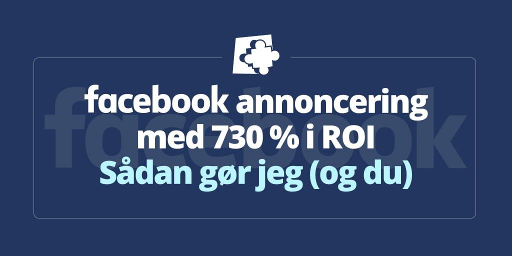 facebook-roi