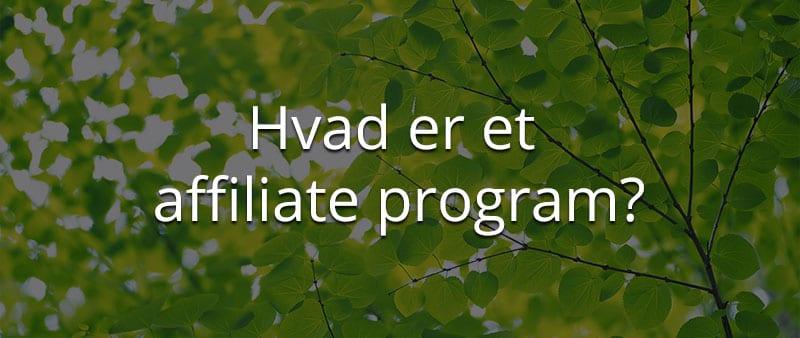 hvad er et affiliateprogram
