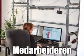 den ene danske medarbejder