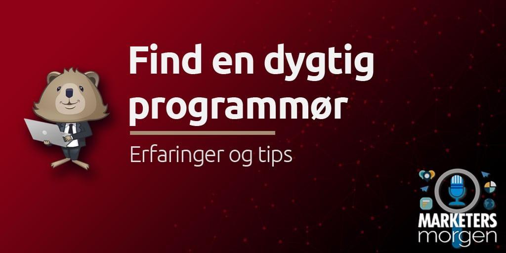 Find en dygtig programmør