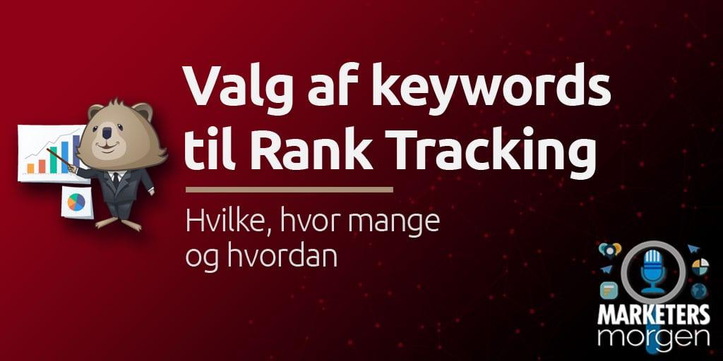 Valg af keywords til Rank Tracking