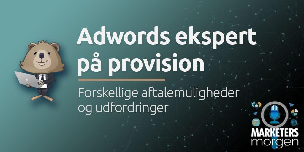 Adwords ekspert på provision