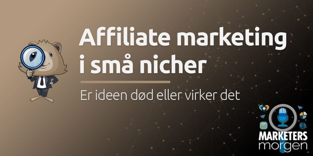Affiliate marketing i små nicher
