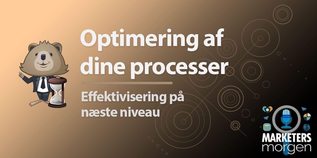 Optimering af dine processer
