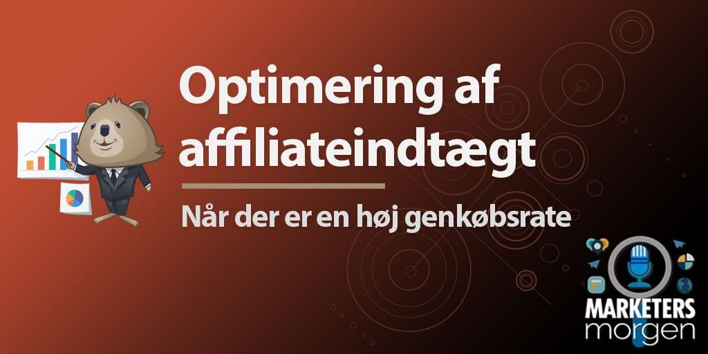 Optimering af affiliateindtægt