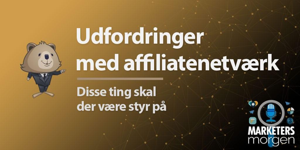Udfordringer med affiliatenetværk