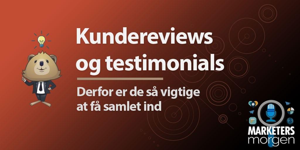 Kundereviews og testimonials