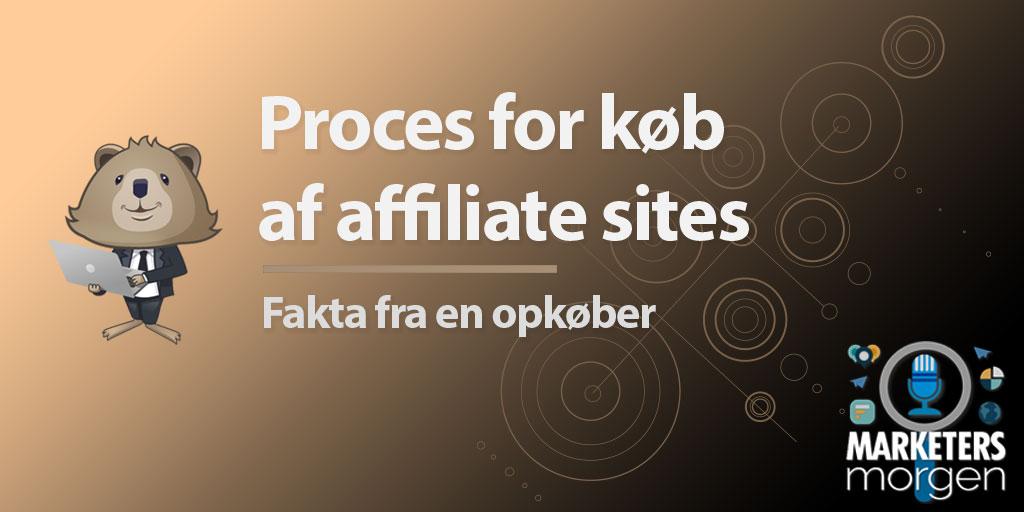 Proces for køb af affiliate sites – Fakta fra en opkøber