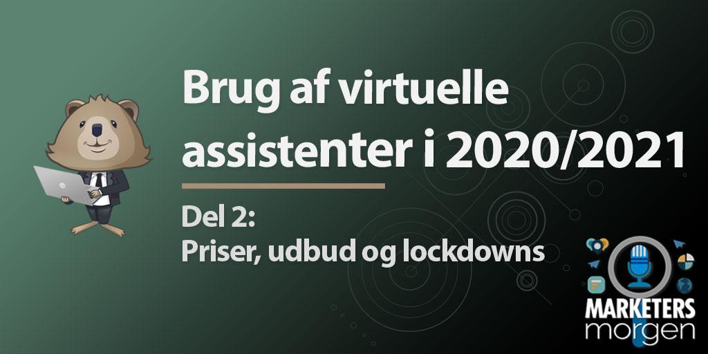 Brug af virtuelle assistenter i 2020/2021