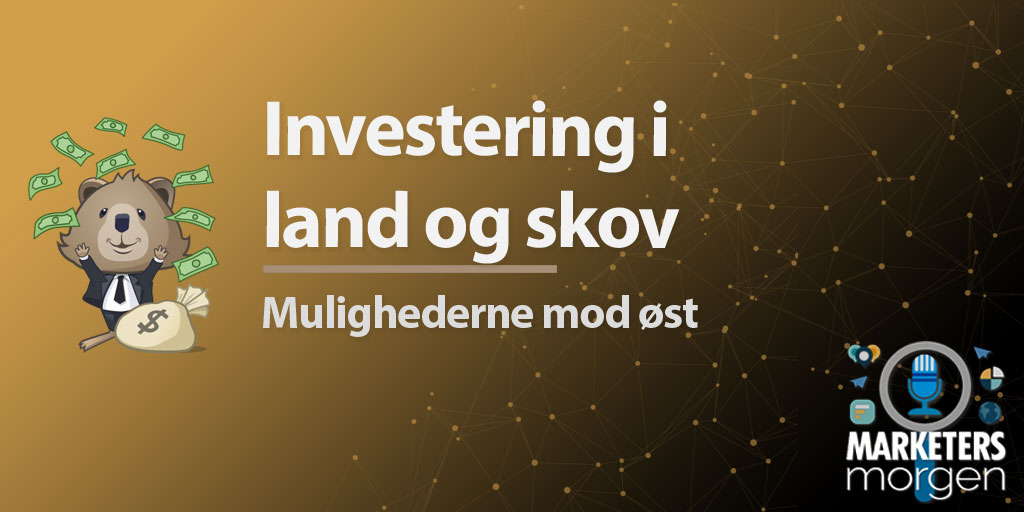 Investering i land og skov