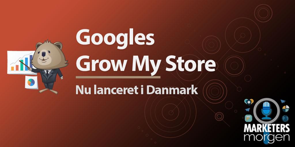 Googles Grow My Store